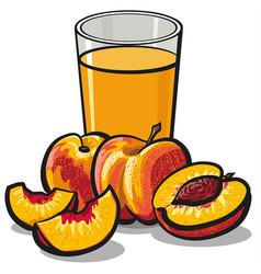 fresh peaches juice vector image vector image