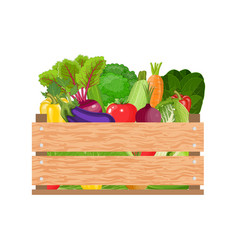 healthy freshly harvested vegetables vector image vector image