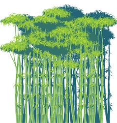 Bamboo thickets vector