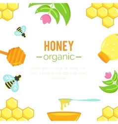 Honey background Natural organic elements vector image vector image