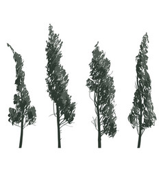 Set sketches of trees isolated on white background vector