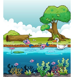 Sea creatures with a duck vector