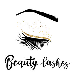 Beauty lashes vector