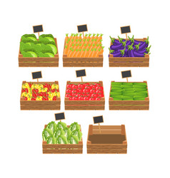 Crates with fresh vegetables vector
