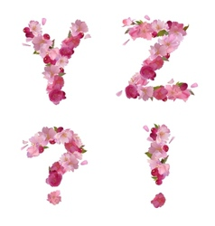 Spring alphabet with cherry flowers yz and signs vector