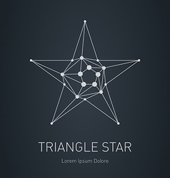 Polygonal star modern stylish logo design element vector