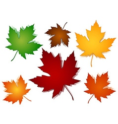 Maple leaves fall color options vector