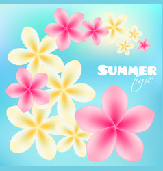 Summer time poster background with bright tropical vector