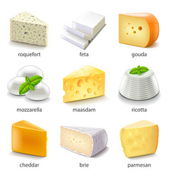 Cheese types icons set vector