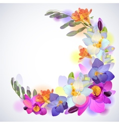 Greeting square background with freesia flowers vector image