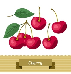 Set of various stylized cherries vector