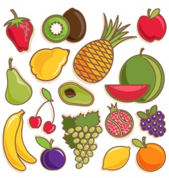 Fruit vector vector