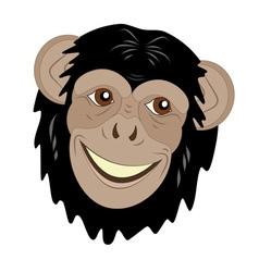 cute monkey head vector image