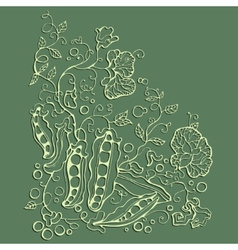 Green pea sketch vector