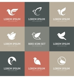 White bird icons set vector
