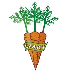 Carrot label vector