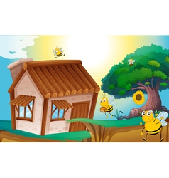Honey bee and house vector