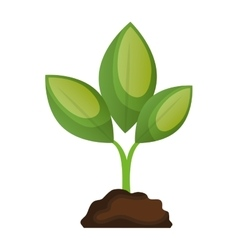 Ecology and nature isolated icon vector
