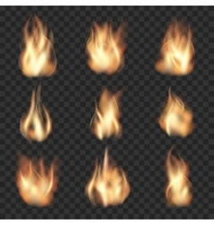 Realistic fire flames on checkered vector