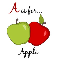 A is for Apple Poster vector image vector image