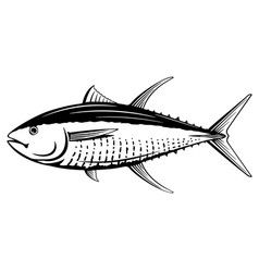 yellowfin tuna black and white fish vector image