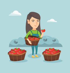 Young caucasian farmer collecting tomatoes vector
