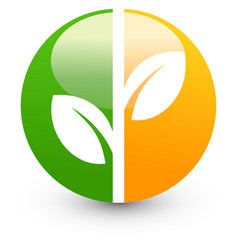 Isolated abstract green and orange color round vector image