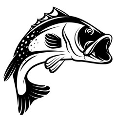 Monochrome of bass with fins vector