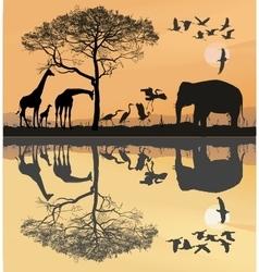 Savana with giraffes herons and elephant vector image