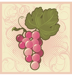 Retro-styled grape bunch vector
