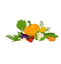 Fresh organic vegetables in big heap isolated vector
