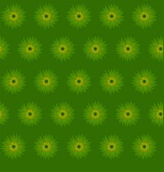 green flower cornflower isolated on white vector image vector image