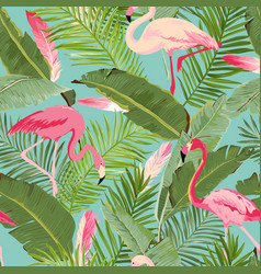 Tropical seamless flamingo and summer pattern vector
