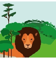 Animal wildlife design vector