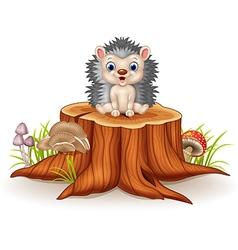 Cute baby hedgehog sitting on tree stump vector