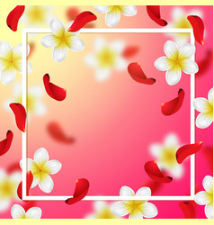 Summer and spring background with tropical flower vector