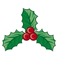 Christmas holly berry symbol vector