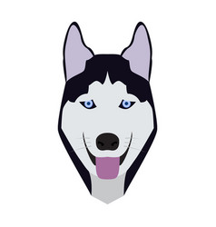 isolated alaskan malamute avatar vector image