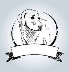 Vintage label with sketch Labrador vector image vector image