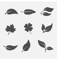 collection of images the leaves trees and plants vector image vector image