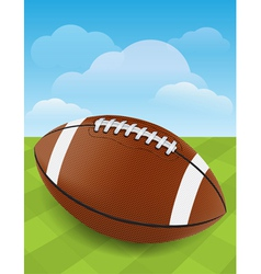 Football on Green Field vector image