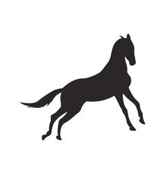 Horse silhouette contour vector image vector image