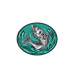 Rockfish Jumping Color Oval Drawing vector image