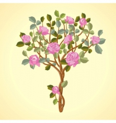 roses tree vector image