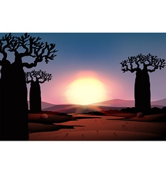 Silhouette of sunset in desert vector image vector image