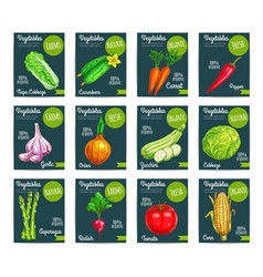 Vegetables price tags set vector