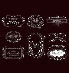 Vintage frames scroll elements and floral vector