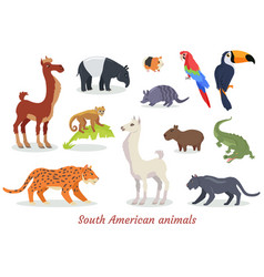 south american animals cartoon set vector image vector image