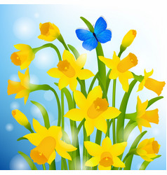 spring postcard with narcissus flowers vector image vector image