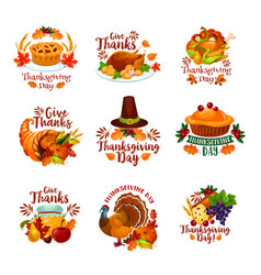 thanksgiving day autumn holiday icons vector image